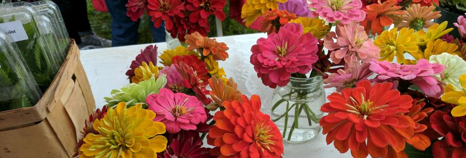 Farmers market 06032017 flowers