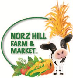 Norz Logo