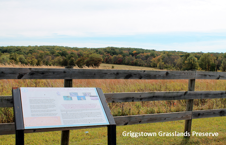 Griggstown grassland closed