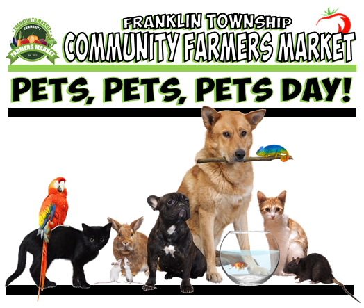 Pet Day Banner