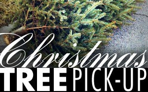 Christmas-Tree-Pick-Up