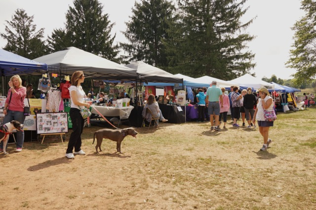 2014 Franklin Day (43)