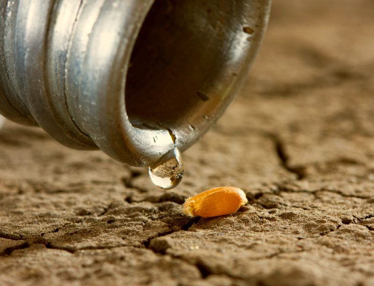 california-drought-Anes-iStock